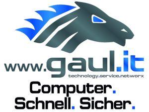 gaul_it